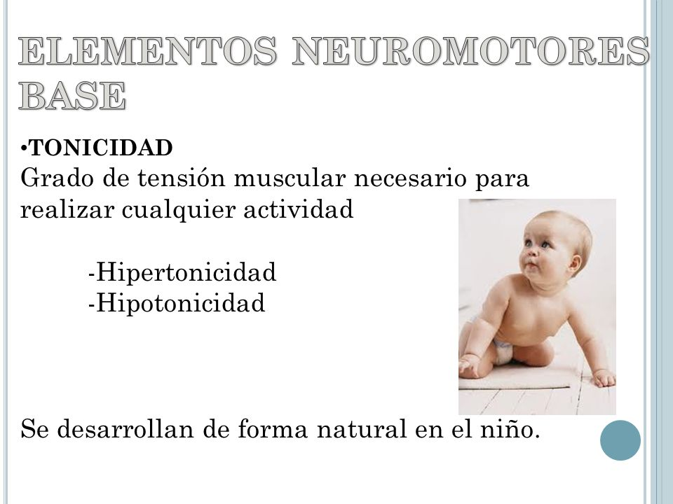 ELEMENTOS NEUROMOTORES BASE
