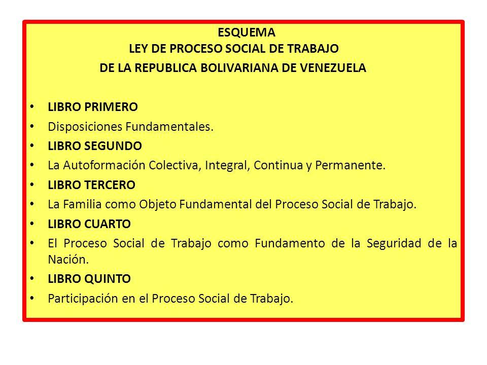 ESQUEMA LEY DE PROCESO SOCIAL DE TRABAJO