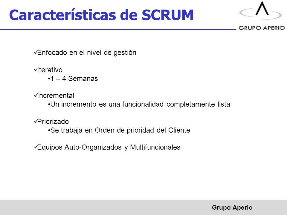 Características de SCRUM