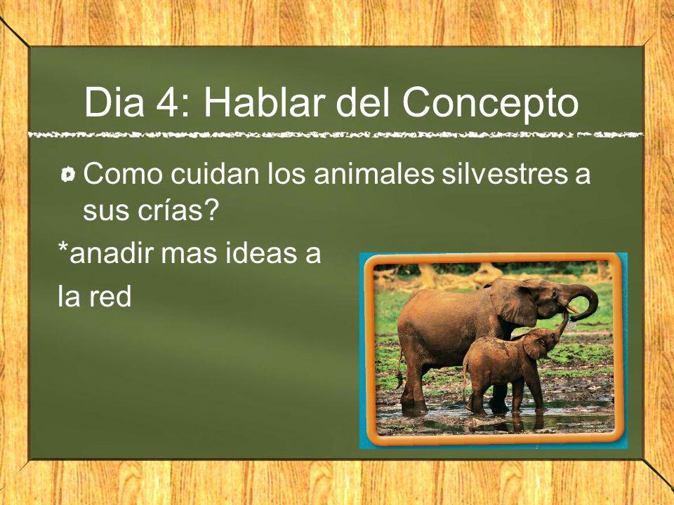 Dia 4: Hablar del Concepto