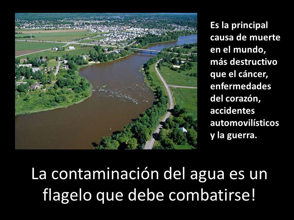 La contaminación del agua es un flagelo que debe combatirse!