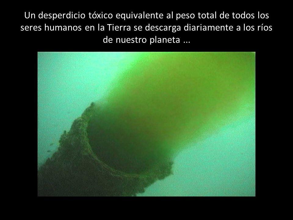 Un desperdicio tóxico equivalente al peso total de todos los seres humanos en la Tierra se descarga diariamente a los ríos de nuestro planeta ...