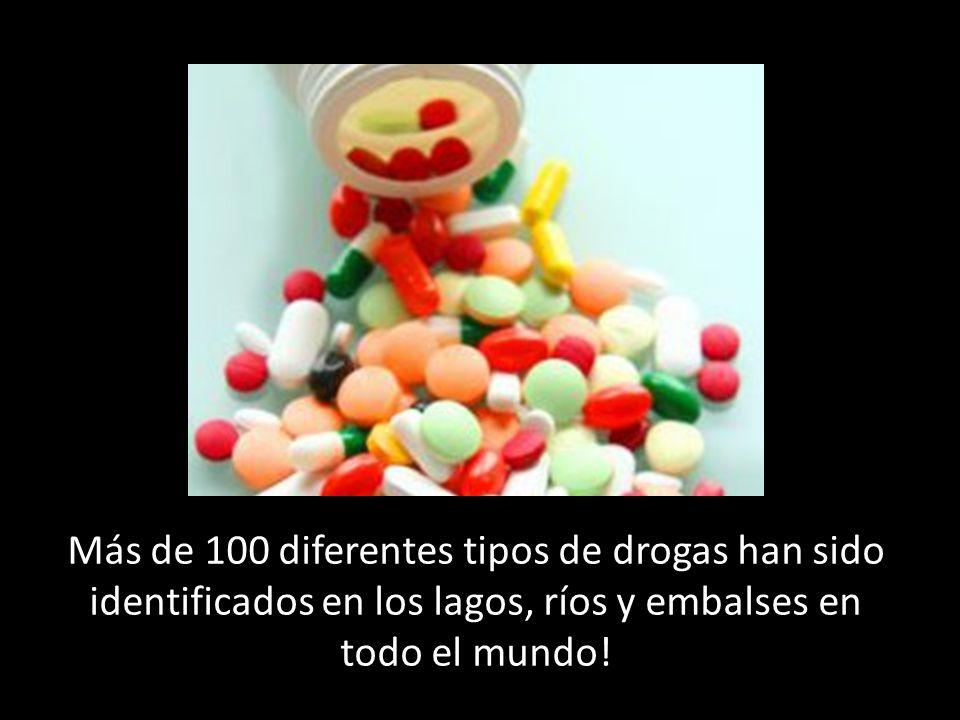 Más de 100 diferentes tipos de drogas han sido identificados en los lagos, ríos y embalses en todo el mundo!