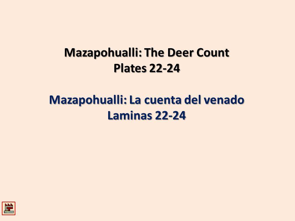 Mazapohualli: The Deer Count Mazapohualli: La cuenta del venado
