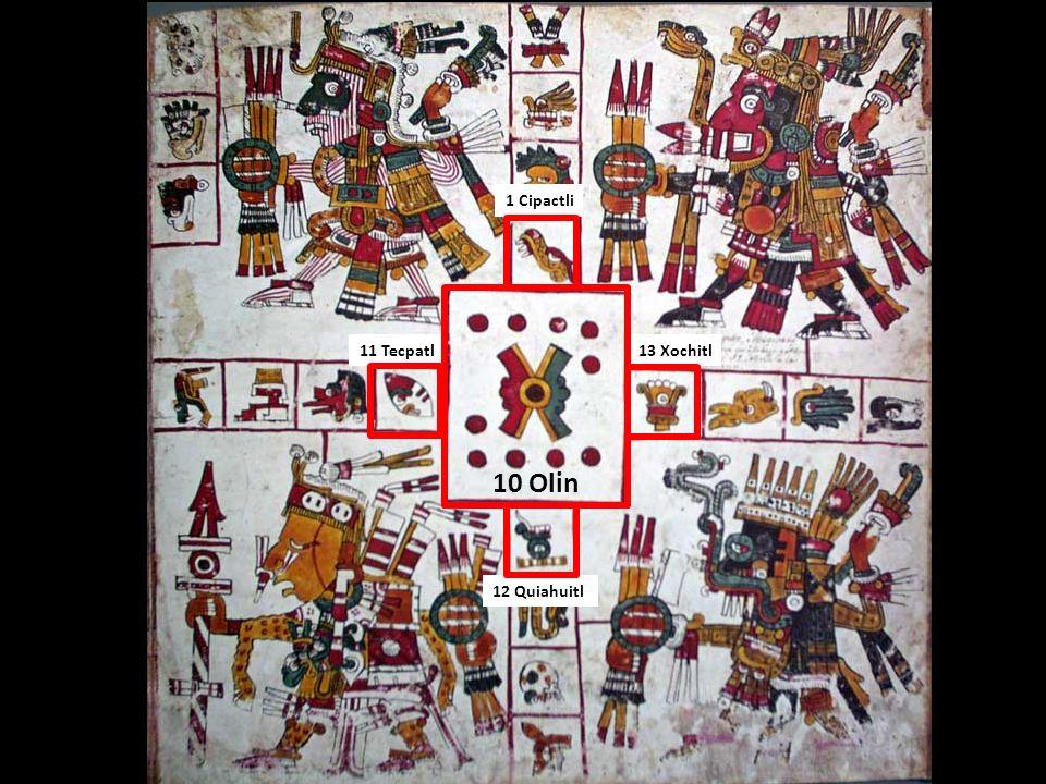 1 Cipactli 11 Tecpatl 13 Xochitl 10 Olin 12 Quiahuitl