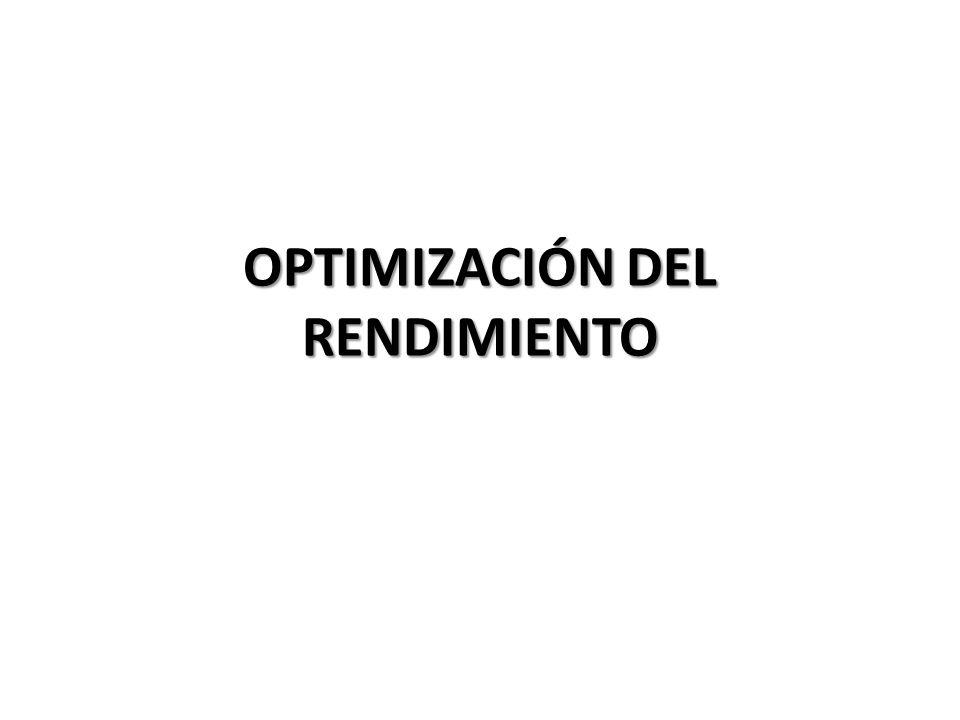 OPTIMIZACIÓN DEL RENDIMIENTO