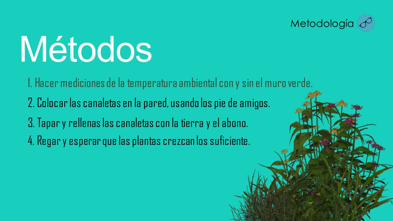 Metodología Métodos. 1. Hacer mediciones de la temperatura ambiental con y sin el muro verde.