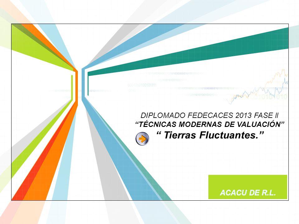 DIPLOMADO FEDECACES 2013 FASE ll TÉCNICAS MODERNAS DE VALUACIÓN Tierras Fluctuantes.