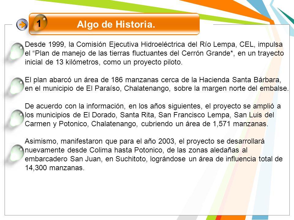1 Algo de Historia.