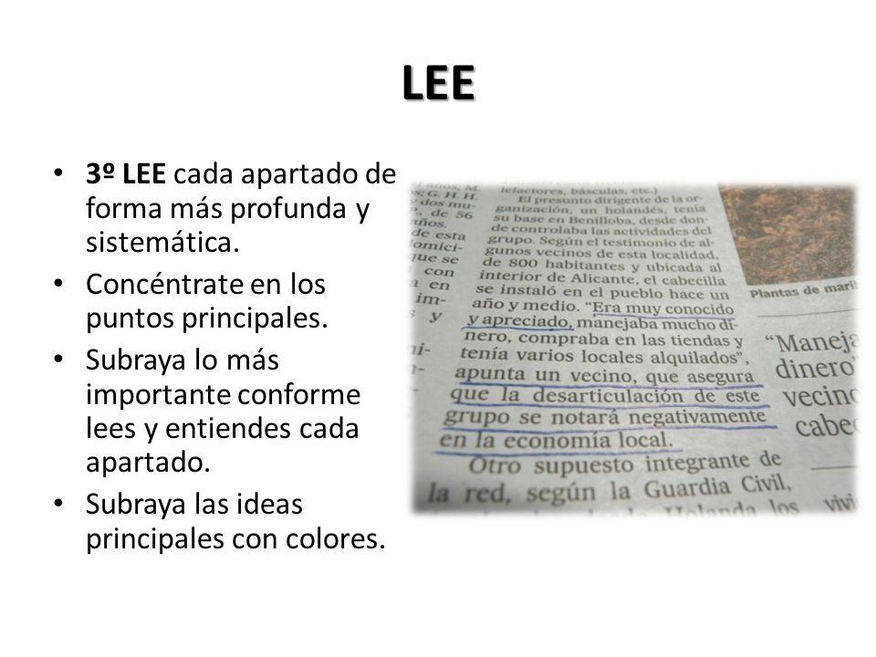 LEE 3º LEE cada apartado de forma más profunda y sistemática.