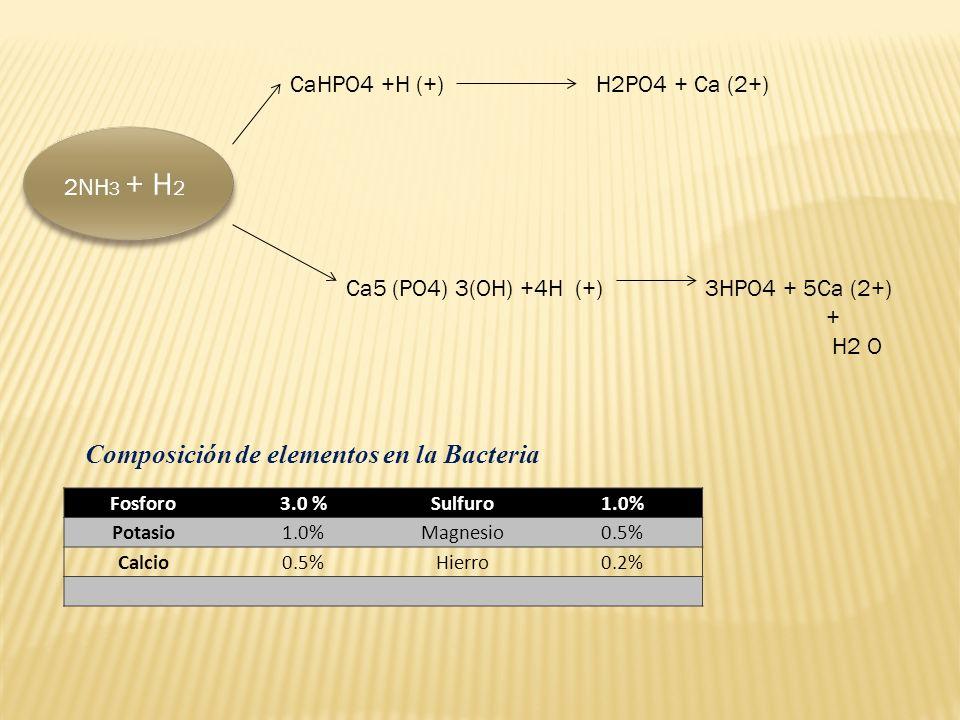 Ca5 (PO4) 3(OH) +4H (+) 3HPO4 + 5Ca (2+) + H2 O