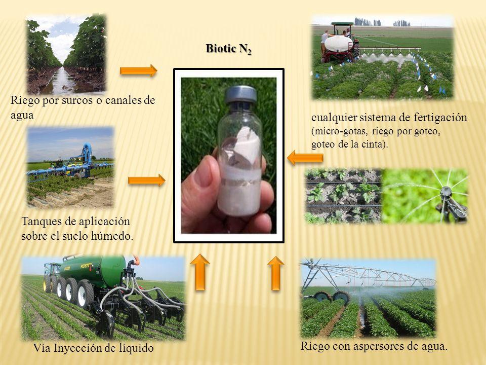 Biotic N2 Riego por surcos o canales de agua. cualquier sistema de fertigación (micro-gotas, riego por goteo, goteo de la cinta).