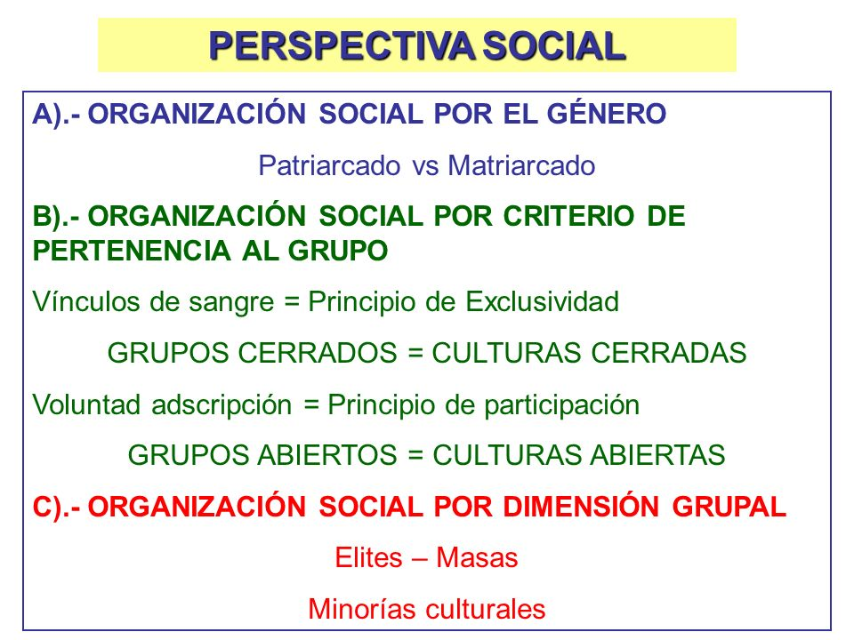 PERSPECTIVA SOCIAL A).- ORGANIZACIÓN SOCIAL POR EL GÉNERO