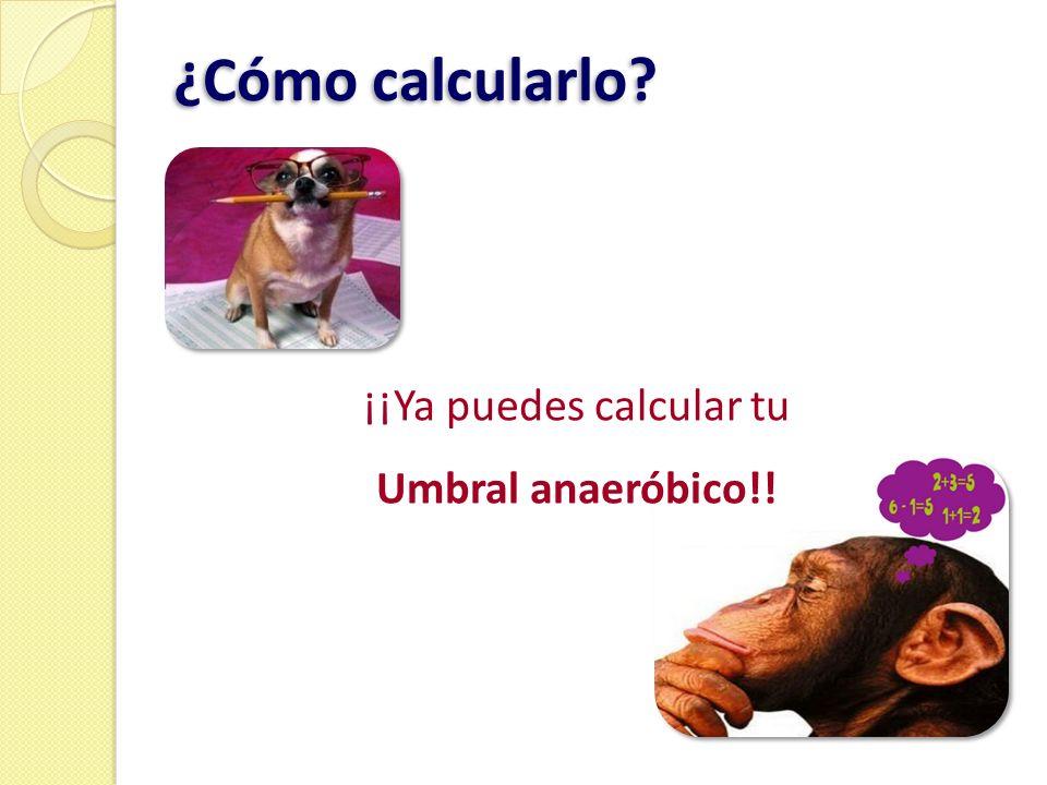 ¡¡Ya puedes calcular tu