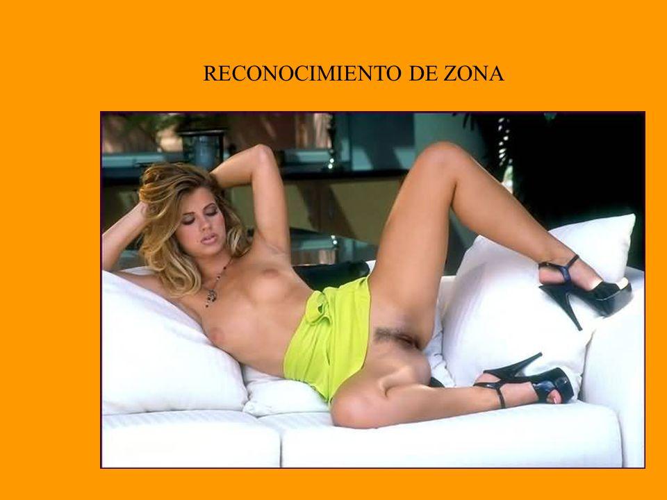 RECONOCIMIENTO DE ZONA