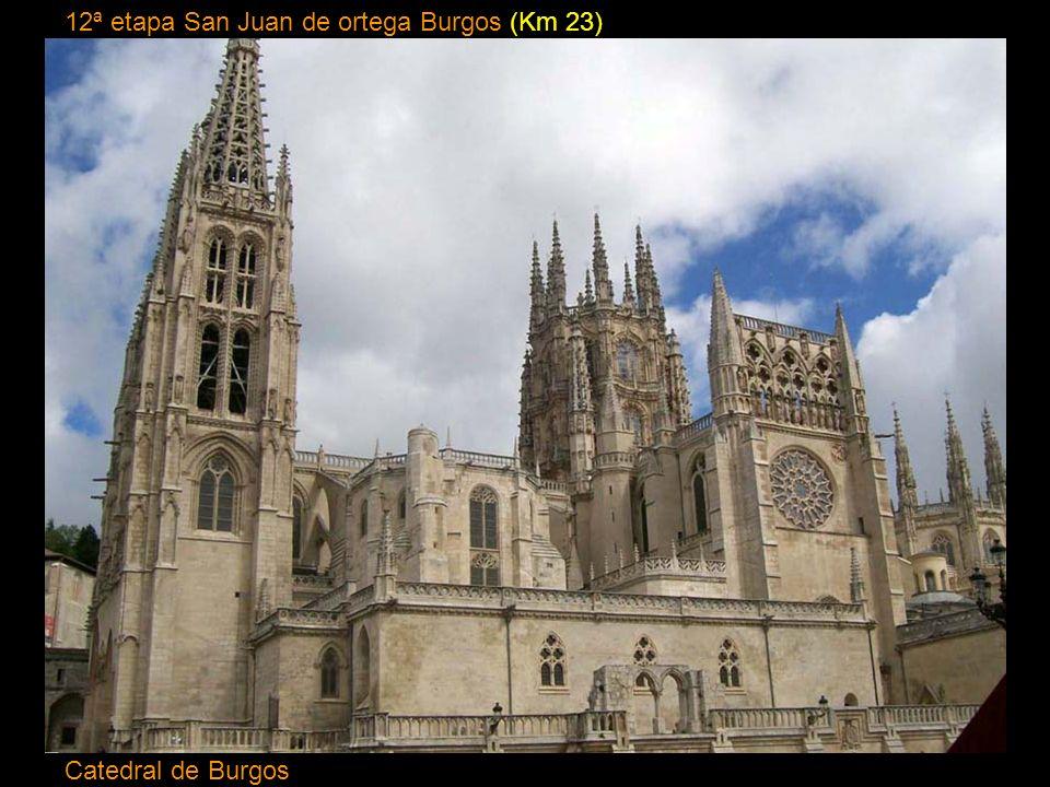 12ª etapa San Juan de ortega Burgos (Km 23)