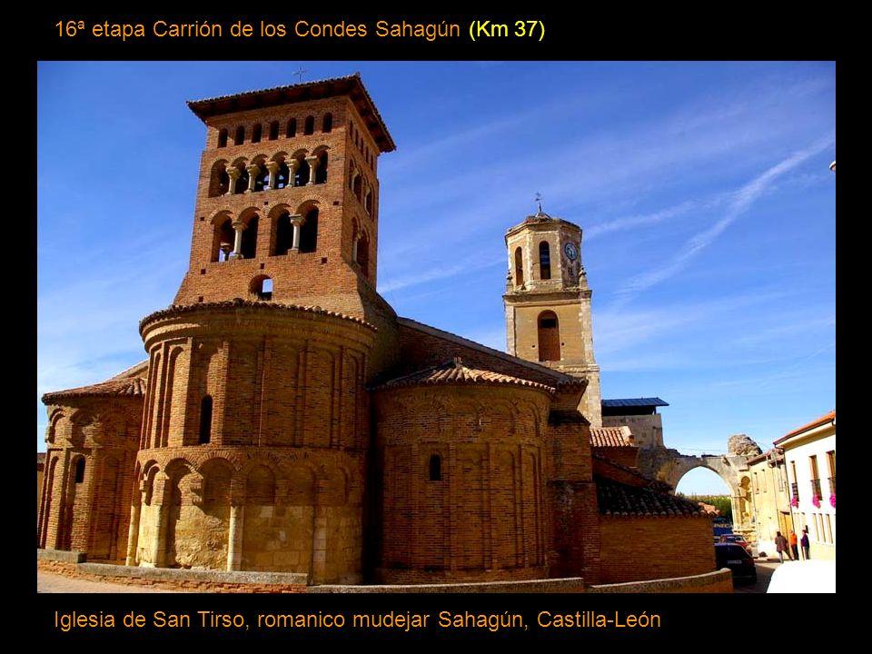 16ª etapa Carrión de los Condes Sahagún (Km 37)