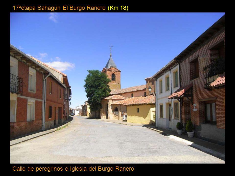 17ªetapa Sahagún El Burgo Ranero (Km 18)