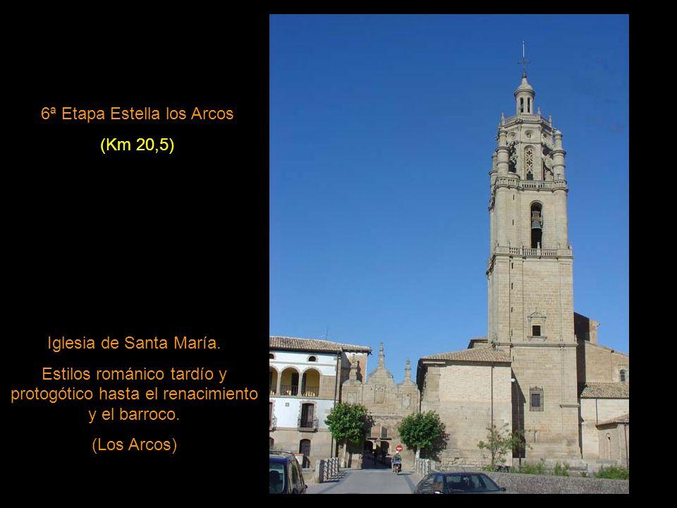 6ª Etapa Estella los Arcos