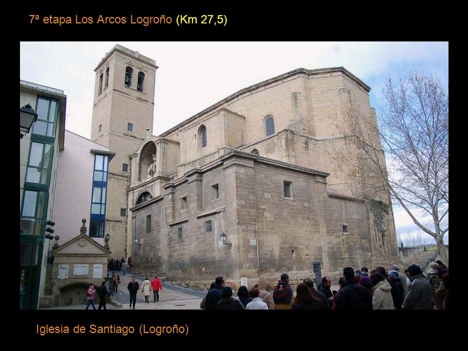 7ª etapa Los Arcos Logroño (Km 27,5)