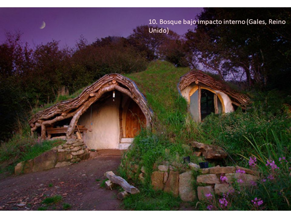 10. Bosque bajo impacto interno (Gales, Reino Unido)