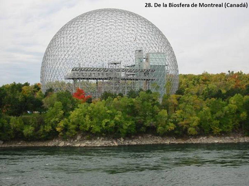 28. De la Biosfera de Montreal (Canadá)