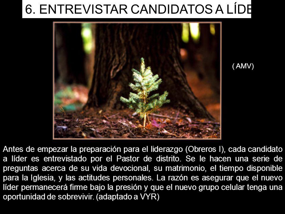 6. ENTREVISTAR CANDIDATOS A LÍDERES