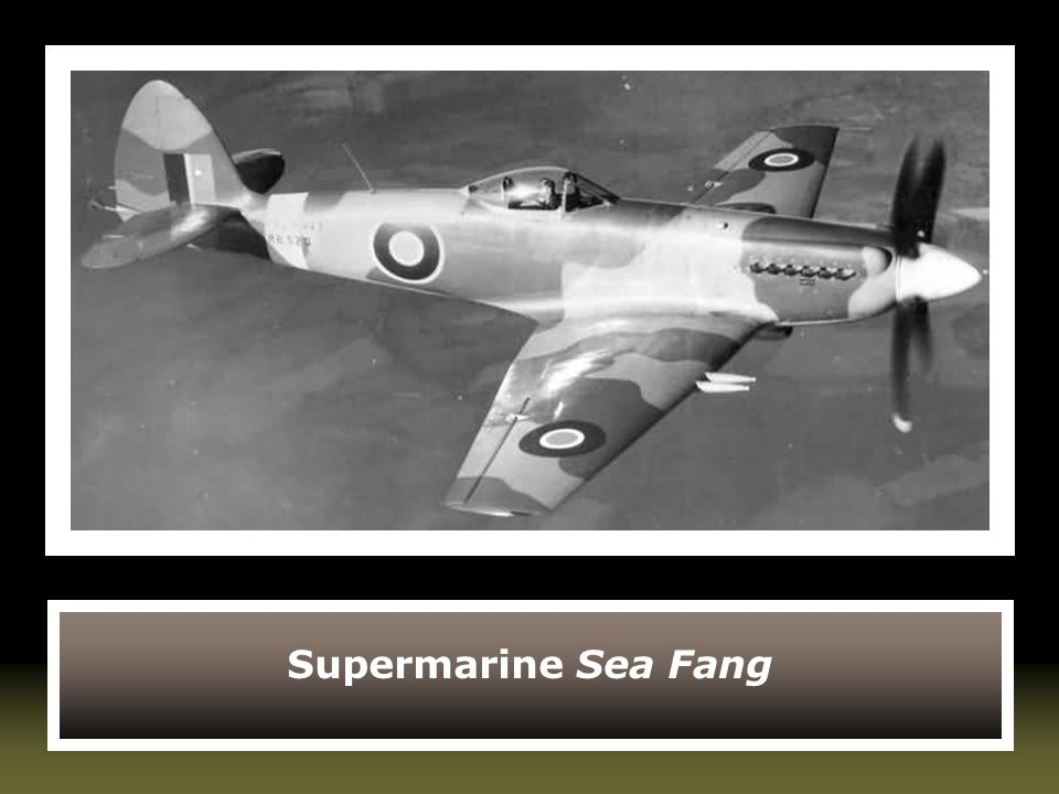 Supermarine Sea Fang