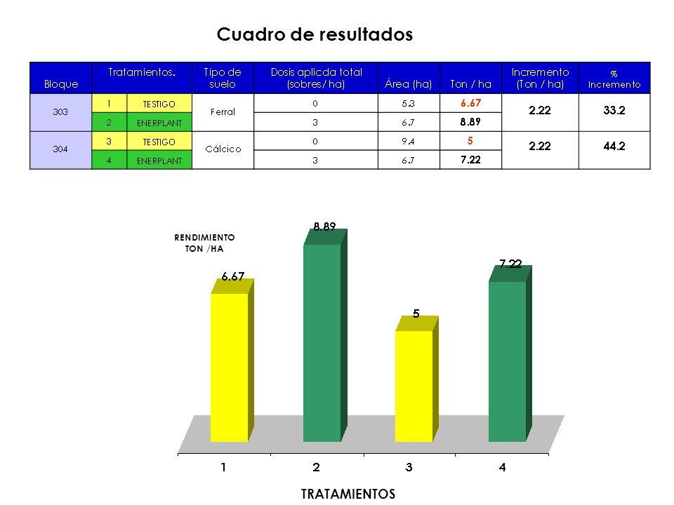 Cuadro de resultados RENDIMIENTO TON /HA TRATAMIENTOS