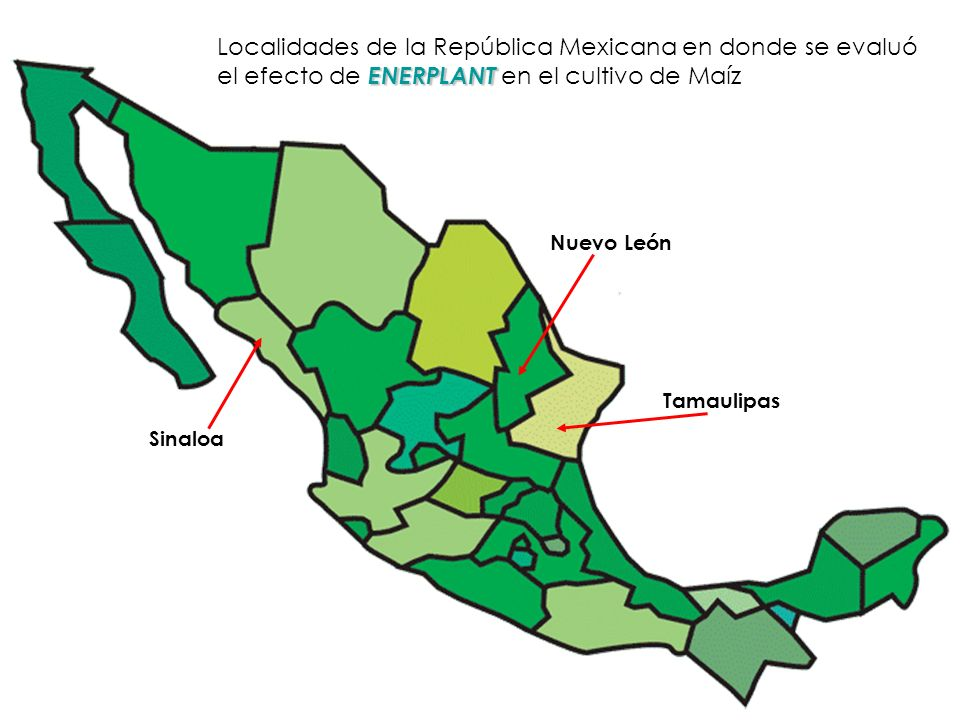 Localidades de la República Mexicana en donde se evaluó