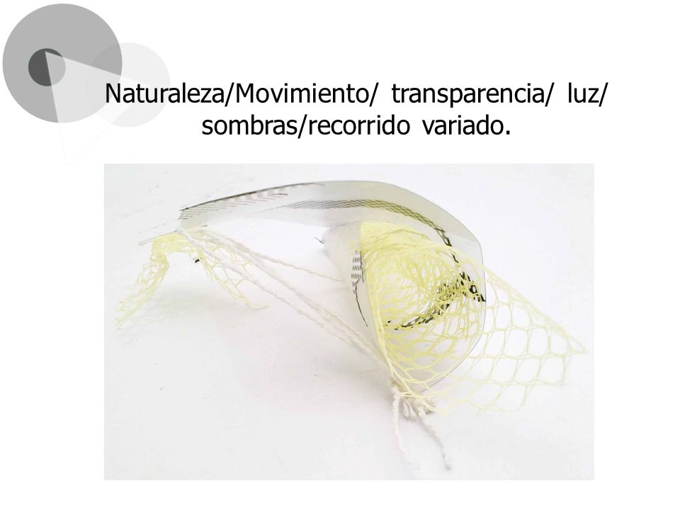 Naturaleza/Movimiento/ transparencia/ luz/ sombras/recorrido variado.