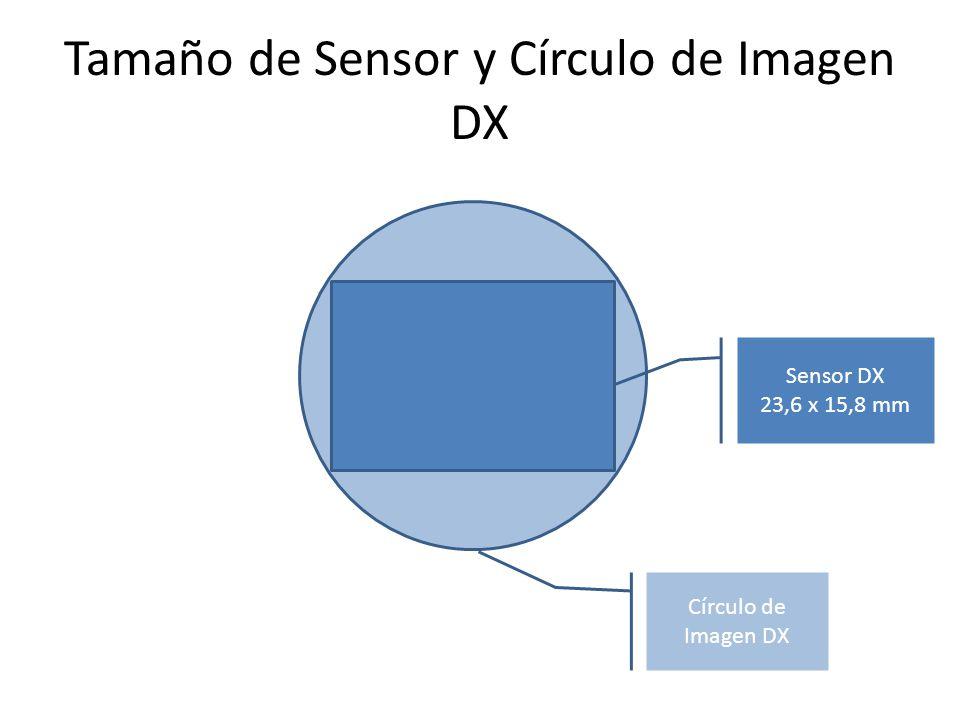 Tamaño de Sensor y Círculo de Imagen DX