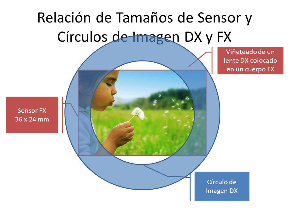 Relación de Tamaños de Sensor y Círculos de Imagen DX y FX