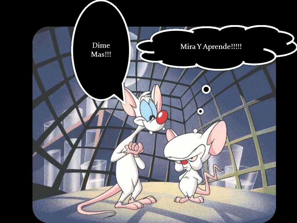 Dime Mas!!! Mira Y Aprende!!!!!