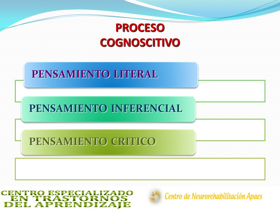 PROCESO COGNOSCITIVO PENSAMIENTO LITERAL PENSAMIENTO INFERENCIAL
