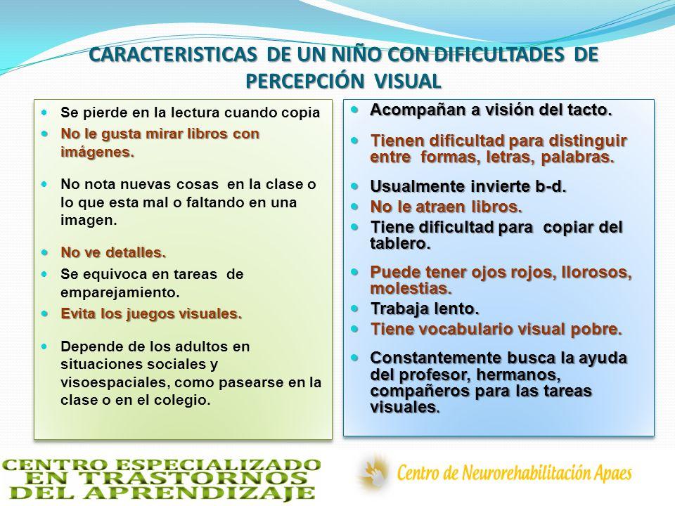 CARACTERISTICAS DE UN NIÑO CON DIFICULTADES DE PERCEPCIÓN VISUAL
