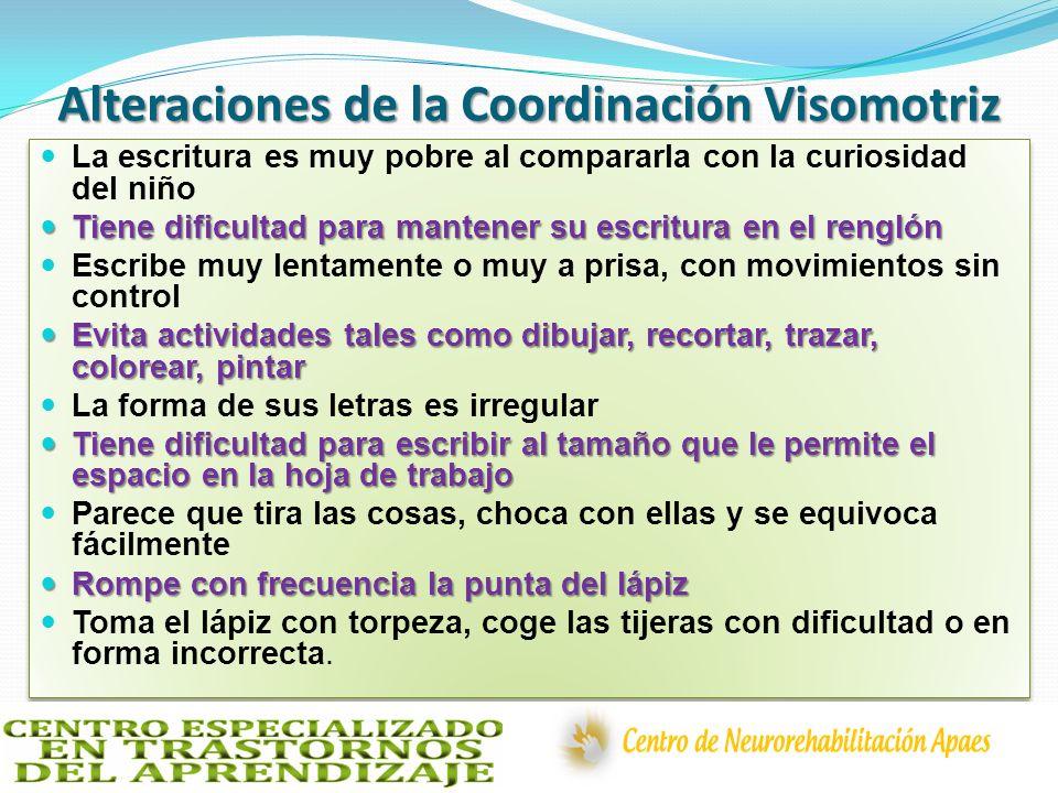 Alteraciones de la Coordinación Visomotriz