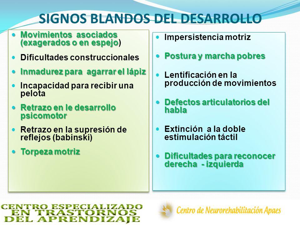 SIGNOS BLANDOS DEL DESARROLLO