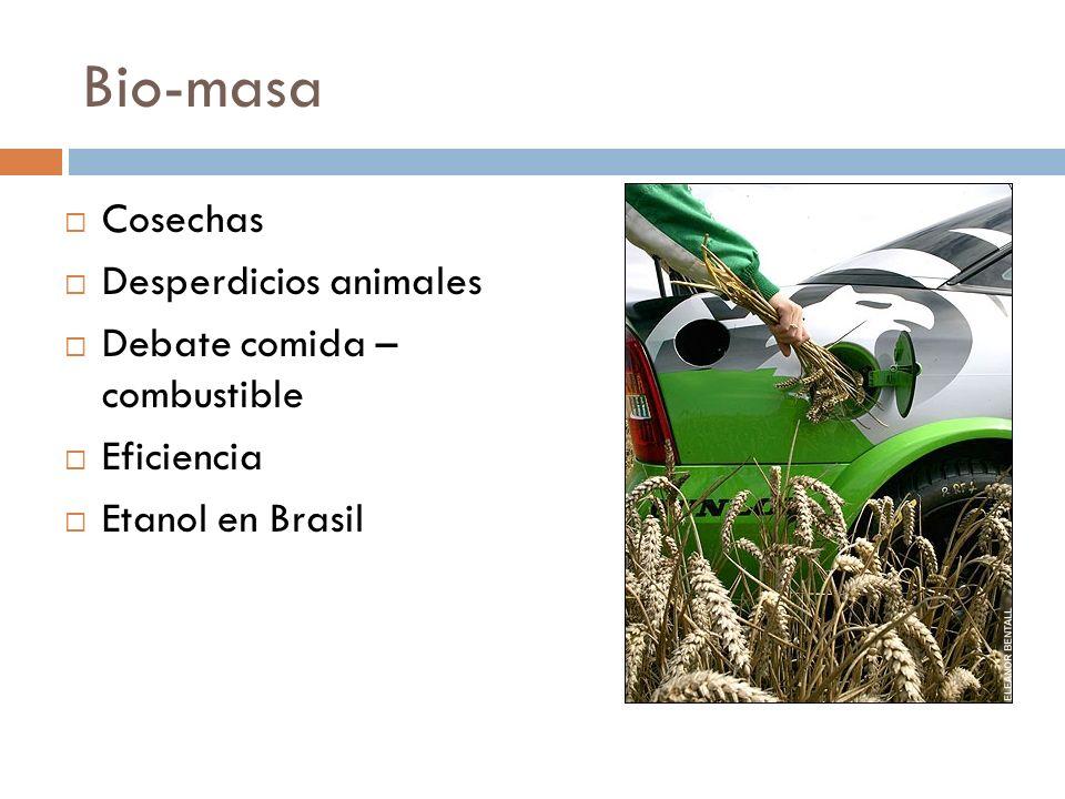 Bio-masa Cosechas Desperdicios animales Debate comida – combustible