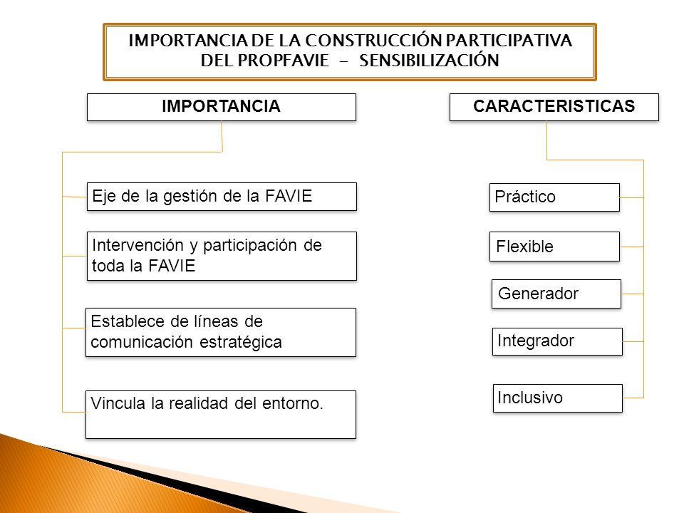 IMPORTANCIA DE LA CONSTRUCCIÓN PARTICIPATIVA DEL PROPFAVIE - SENSIBILIZACIÓN