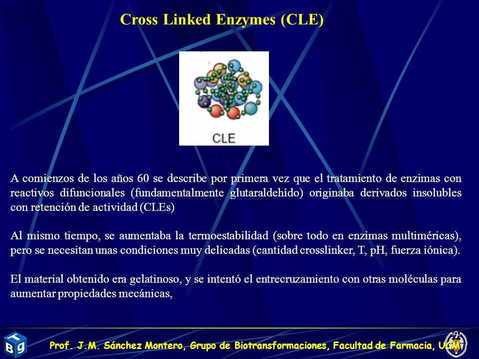 Cross Linked Enzymes (CLE)