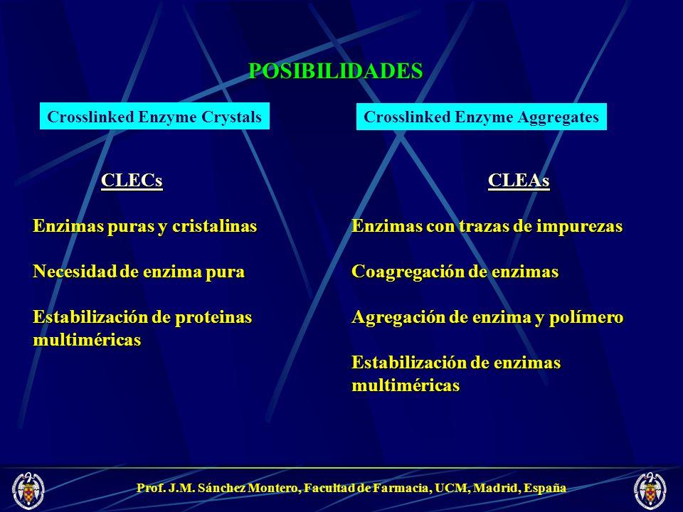 POSIBILIDADES CLECs Enzimas puras y cristalinas