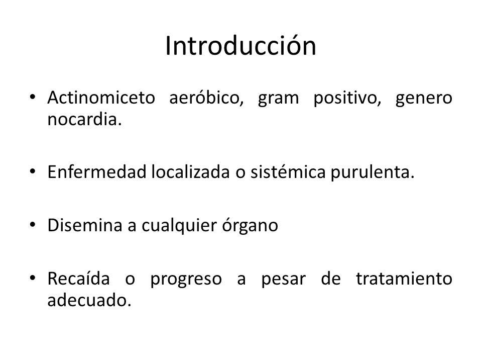 Introducción Actinomiceto aeróbico, gram positivo, genero nocardia.