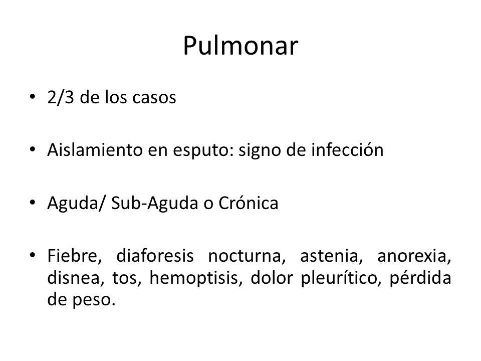 Pulmonar 2/3 de los casos Aislamiento en esputo: signo de infección