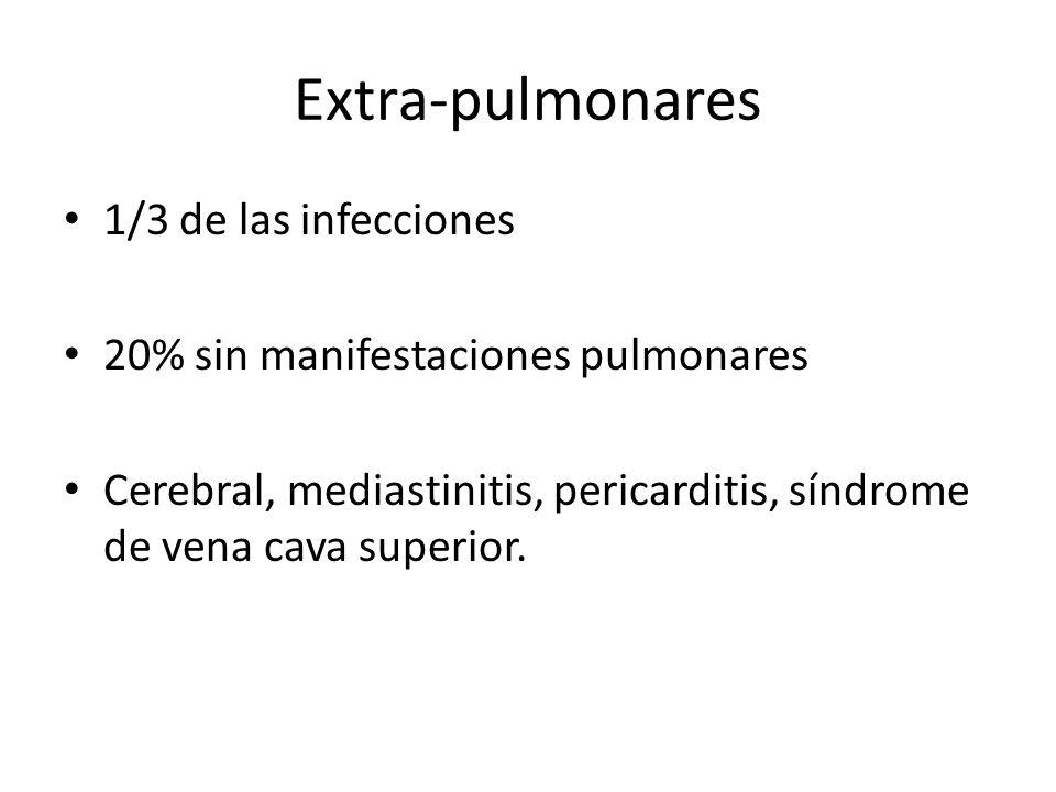 Extra-pulmonares 1/3 de las infecciones
