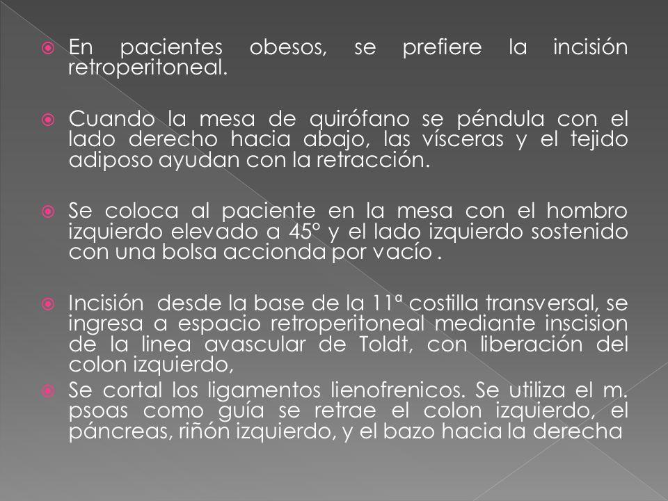 En pacientes obesos, se prefiere la incisión retroperitoneal.