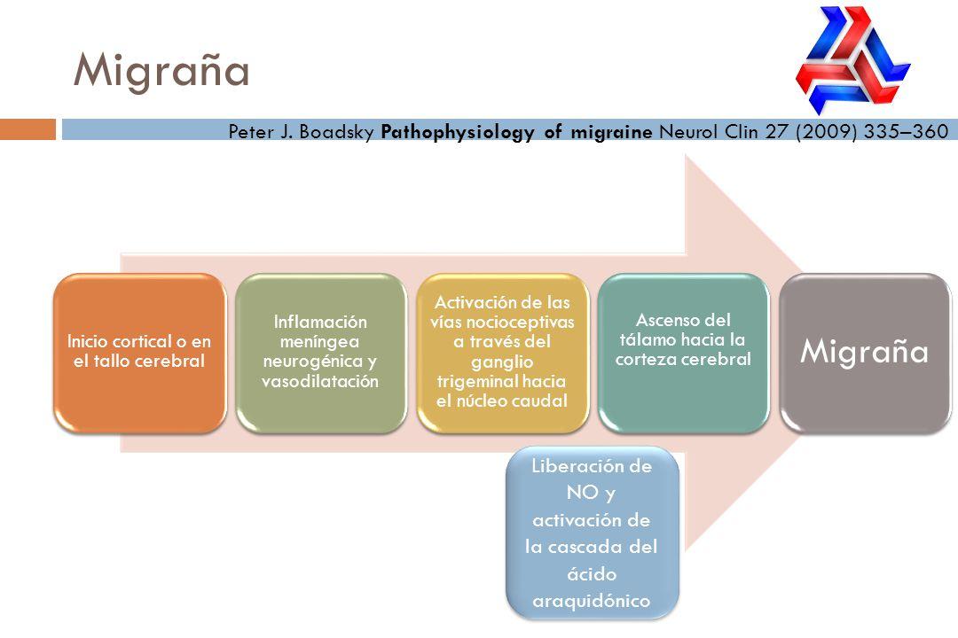 Migraña Peter J. Boadsky Pathophysiology of migraine Neurol Clin 27 (2009) 335–360. Inicio cortical o en el tallo cerebral.
