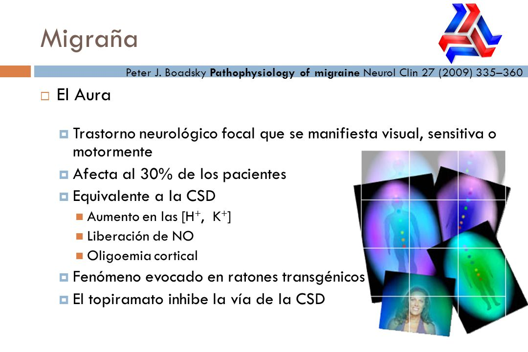 Migraña Peter J. Boadsky Pathophysiology of migraine Neurol Clin 27 (2009) 335–360. El Aura.