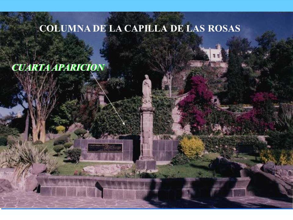 COLUMNA DE LA CAPILLA DE LAS ROSAS