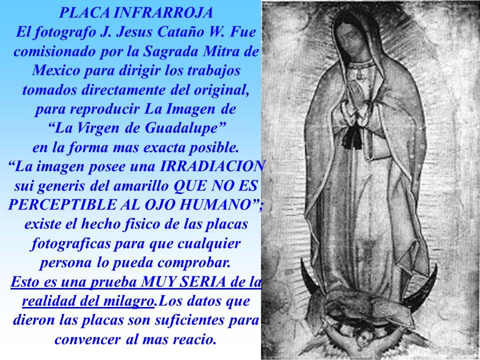 La Virgen de Guadalupe en la forma mas exacta posible.